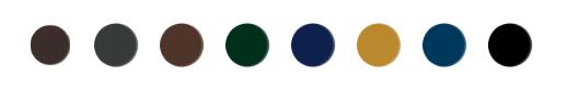 Euphidra_color_eye_liner_colori